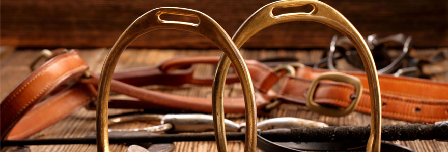 matériaux pour chevaux